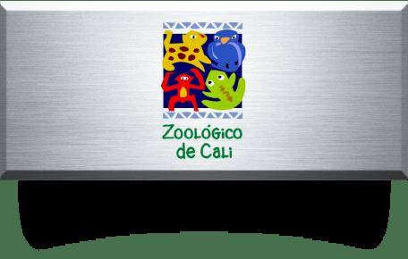 proyecto(s) con acero inoxidable en zoológico de cali